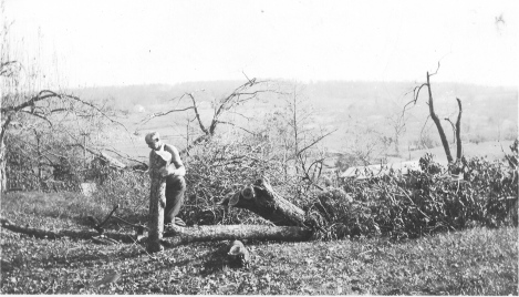Pearl Farm 1938 Hurricane Damage